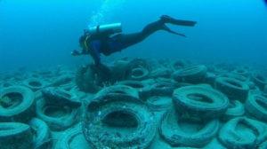 """Ein Taucher schwimmt über das """"Reifenriff"""" vor Fort Lauderdale. Es ist kein einziger Fisch zu sehen"""
