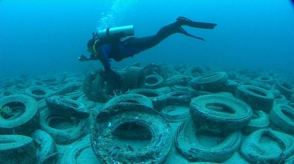"""Ein Taucher schwimmt über das """"Reifenriff"""" voller Altreifen vor Fort Lauderdale. Es ist kein einziger Fisch zu sehen"""
