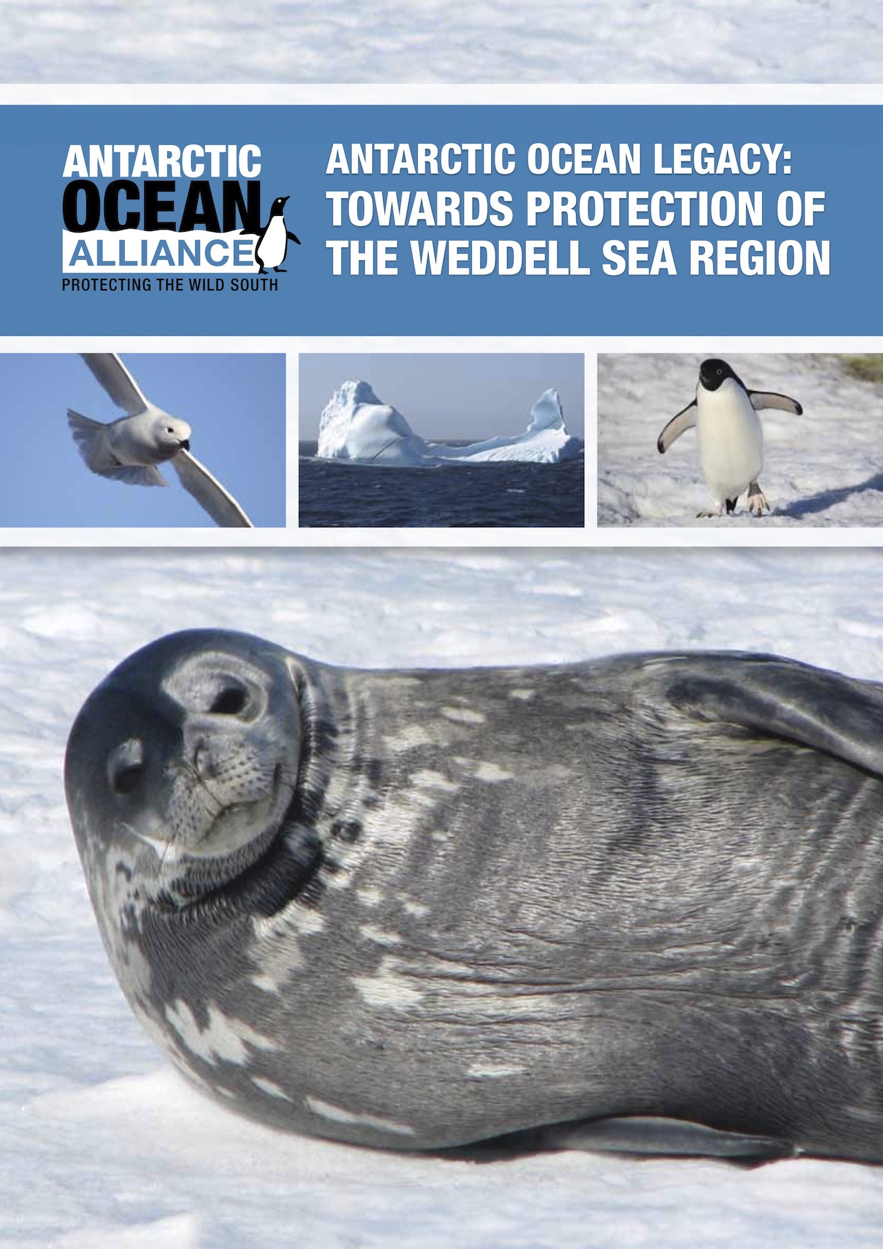 "Titelblatt des Berichtes: ""Vermächtnis des Südlichen Ozeans: Eine Vision für den Schutz des Weddell-Meeres"" (Antarctic Ocean Legacy: Towards Protection of the Weddell Sea Region)"