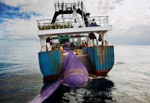 Take Action End overfishing, foto: PEW