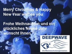 Newyear2015_deepwave