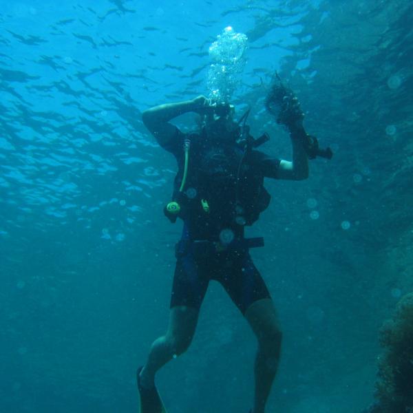 coral sea under threat
