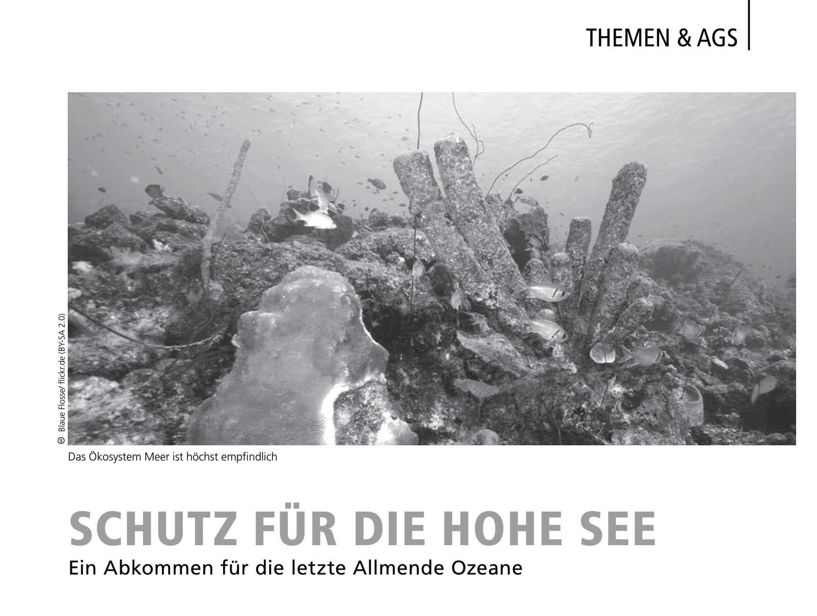 Zeitungsausschnitt Artikel Schutz für die Hohe See mit Bild eines Korallenriffs und der Unterschrift Das Ökosystem Meer ist höchst empfindlich