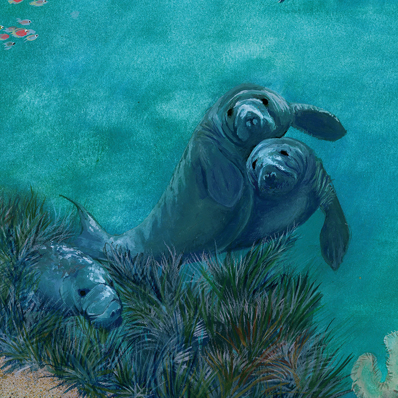 Meeresverschmutzung_good_icon_RGB