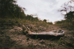 Auf einem Waldboden liegt eine verrottete Plastikflasche