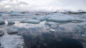 Mehrere kleine Eisschollen schwimmen auf dem Wasser