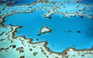 Eine Luftaufnahme vom Great Barrier Reef, türkises Wasser und bunte Korallen