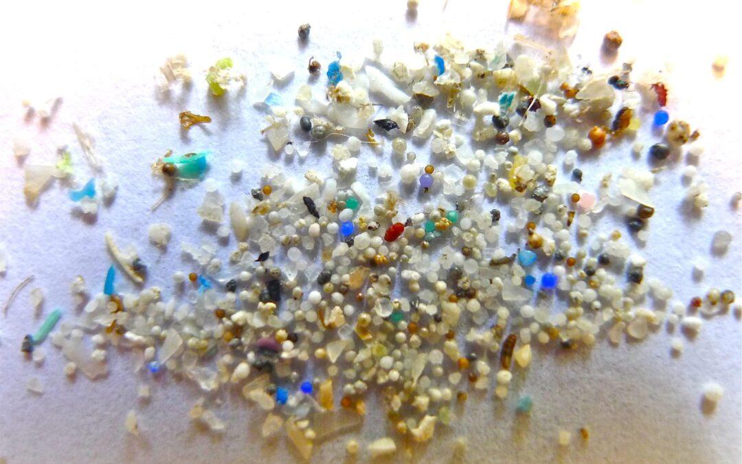 Mikroplastikeintrag_in_die_marine_umwelt_workshop
