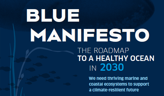 Blauer Hintergrund mit folgenden weißen Schriftzug: BLUE MANIFESTO THE ROADMAP TO A HEALTHY OCEAN IN 2030: We need thriving marine and coastal ecosystems to support a climate-resilient future