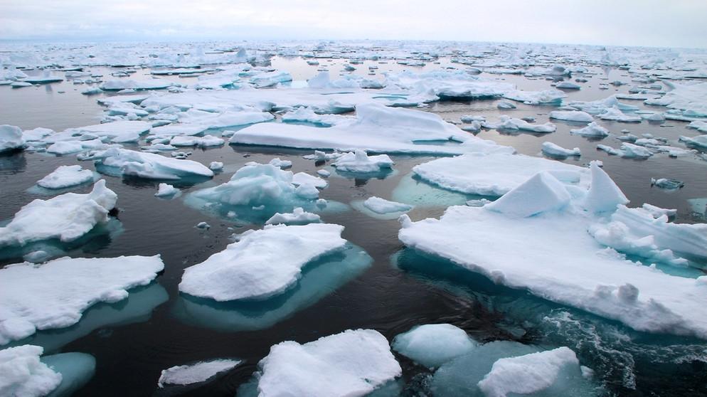 Das Bild zeigt viele Eisschollen die auf dem offenen Meer treiben. Bis zum Horizont sind nur die Eisschollen sowie ein paar Wolken zu sehen