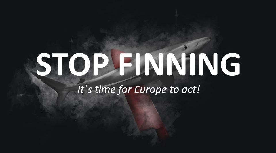 Ein Hai ist im Hintergrund zu sehen, von einem roten Messer durchstochen. Im Vordergrund steht in weißer Schrift: STOp FINNING- It's time for Europe to act!