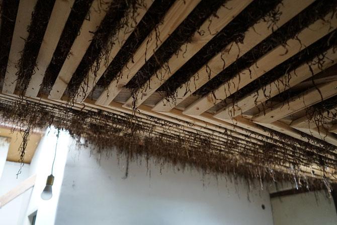 Getrocknetes Seegras wird als Dämmmaterial der Decke benutzt.