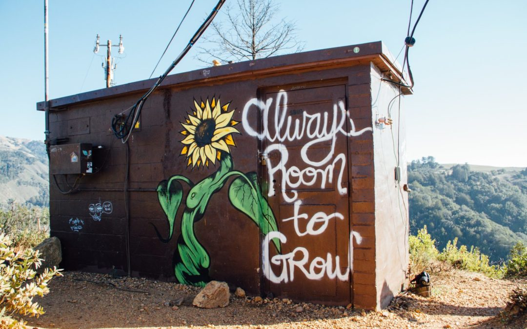 graffiti_always_room_to_grow