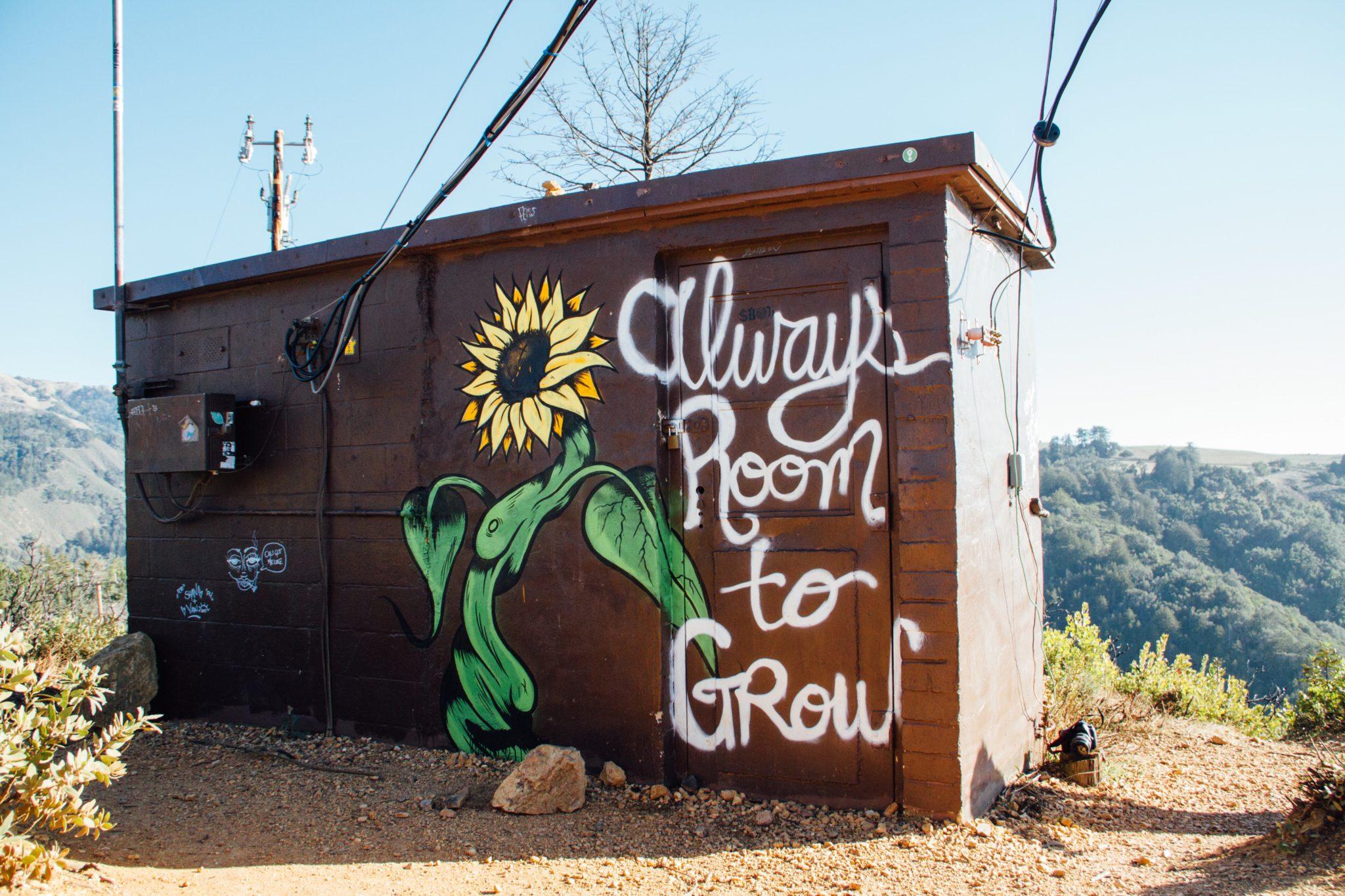 Braune Holzhütte mit dem Graffiti einer Sonnenblume drauf und neben dran der Text in weißer Farbe: always room to grow