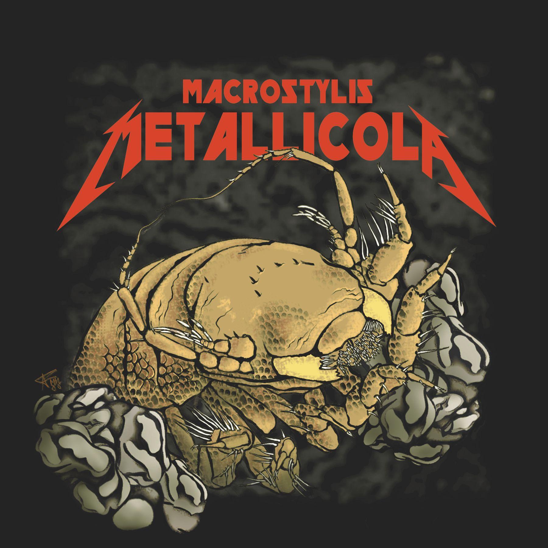 eine Zeichnung einer Tiefsee-Assel im Comic-Stil, die nach der Band Metallica bennat wurde, mit einem roten Schriftzug im Metallica-Stil