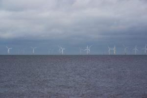 Eine großer Windpark steht im offenen Meer