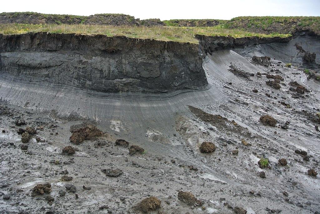 Ein kantiger Abbruch im Grasboden zeigt den darunter liegenden Permafrostboden